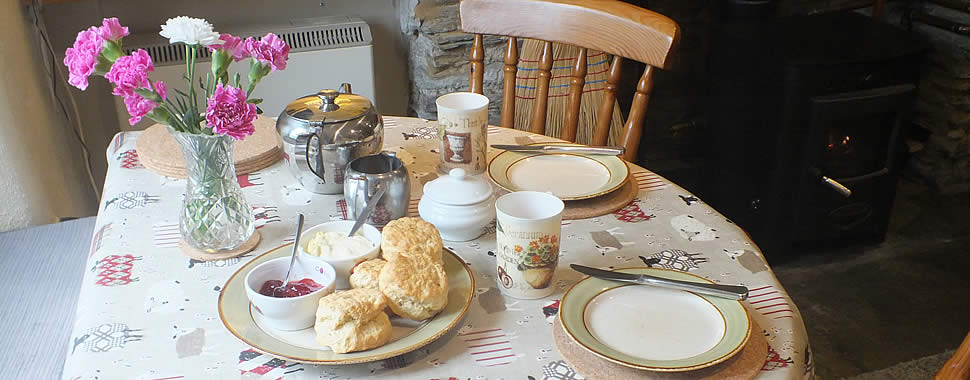 A delicious cream tea awaits our guests on arrival