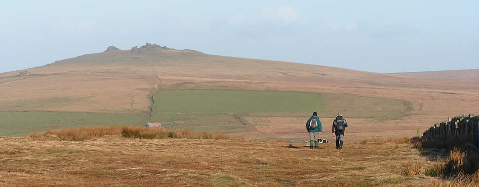 Dartmoor National Park, hikers take their dog for a walk from Hessary Tor heading to Great Mis Tor
