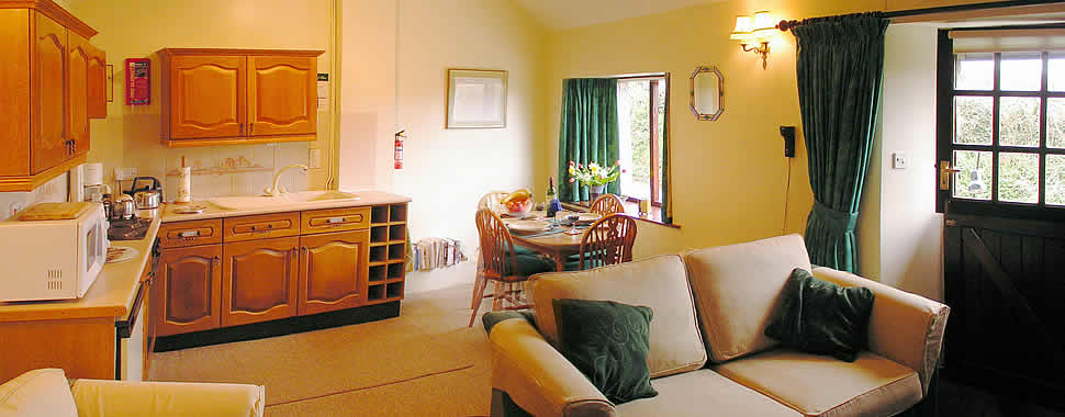 The lounge at The Smithy self catering holiday cottage in Brentor, Dartmoor